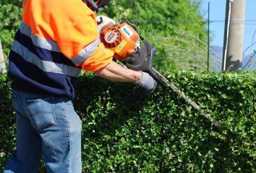 Giardiniere disponibile per manutenzione aree verdi